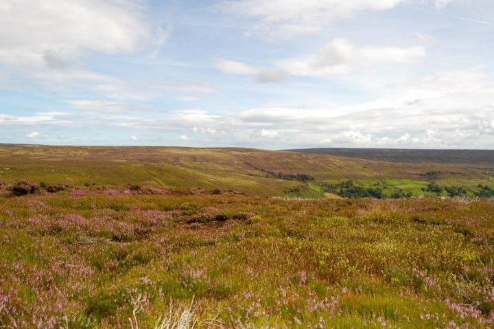 Bransdale has a reputation for being one of the most isolated dales in the North York Moors National Park and is rarely visited as compared with Farndale and Rosedale for example