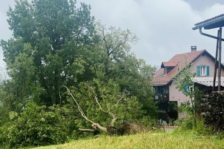 In July the storms on the Continent reach hurricane strength and cause huge damage everywhere...