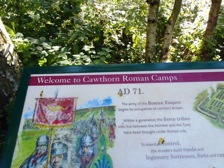 Cawthorn Camps is one of the archaeological treasures of the North York Moors. Nearly 2,000 years ago, a detachment of Roman troops built here a temporary fort.