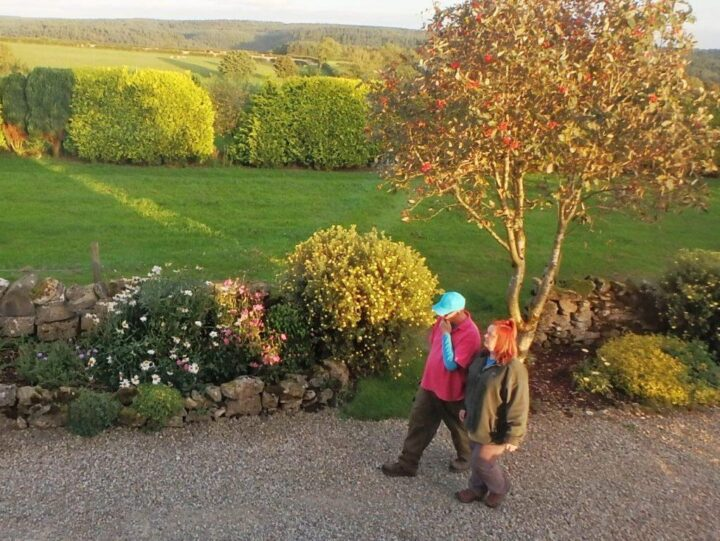 """Thanks to Fiona and Geoffrey (""""Green Rhapsody"""") who have been thinking a lot about the planting..."""