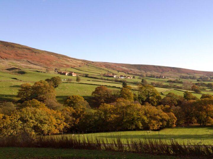 Hopefully we can enjoy many more lovely autumn days!