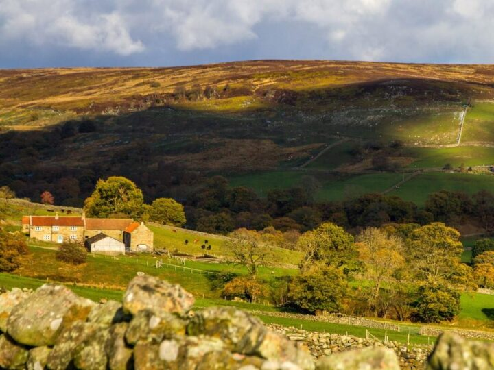 Farndale as well is very autumnal...