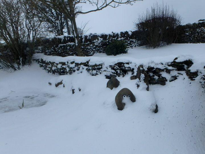 Auch der Garten zeigt sich eher winterlich.