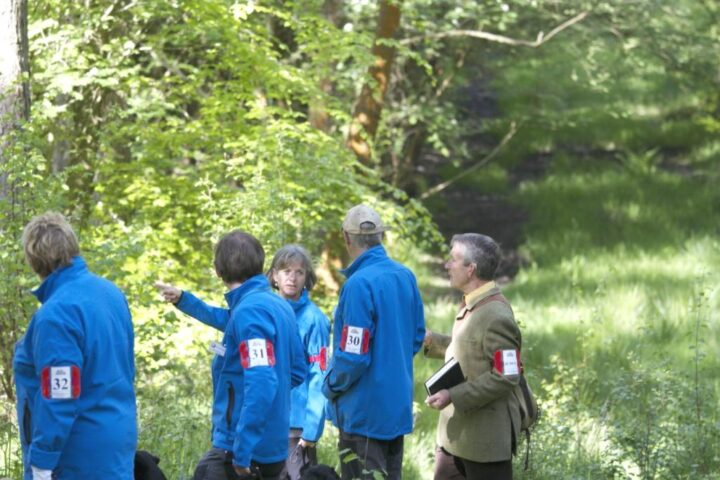The next exercise (test 1) is judged by Colin Pelham: Walk-up in the forest with four in line. Each dog has to retrieve a double mark. Despite the very difficult ground the scores are: 19/18/18/19