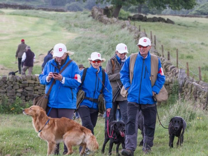 14./15.6.2018: Kennel Club International Retriever Tem Event in Chatsworth, Team Switzerland!