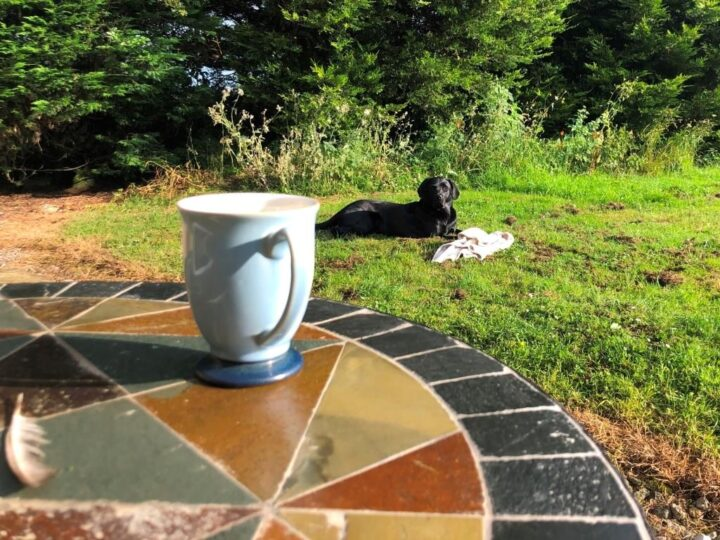 ...and we can enjoy the sun with a nice cup of tea!