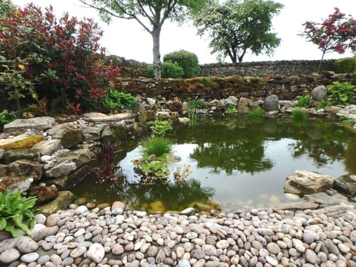 "We prefer our ""kind"" of beach and our pond in the garden..."