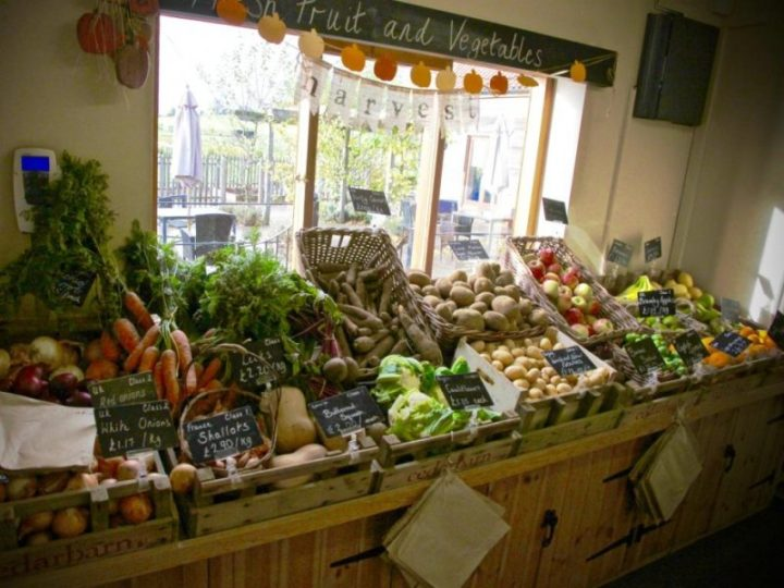 The harvest of the autumn - fresh at our farmshop!