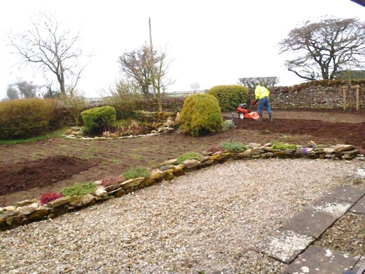In 2014 we decided to renew our lawn...