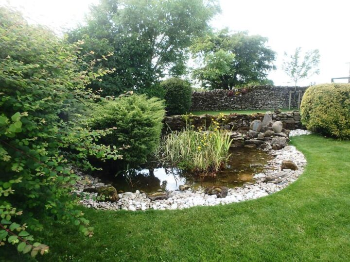 ...and 2015 (one year later) the lawn looked lovely - but not the biotope!