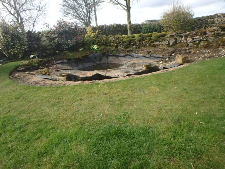 ...and our pond is ready for a facelift.