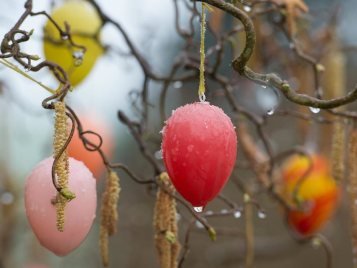 Auch wenn der Frühling sich Ende März ziemlich regnerisch gibt, wünschen wir: FROHE OSTERN! Und - für alle Fälle - ein kleines Video zum Zeitvertreib (am Seitenende)...
