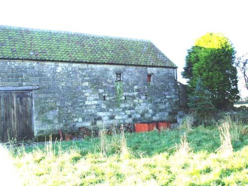Das ursprüngliche Stallgebäude von der hinteren Seite: Weder Türen noch Fenster für die zukünftige Wohnung - und ein kleiner angebauter Geissenstall (rechts hinter der Konifere).