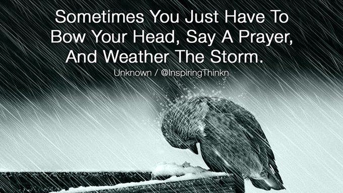 ...and much more! Sometimes you just have to bow your head, say a prayer, and weather the storm.